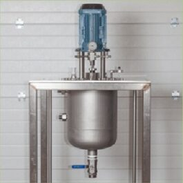 Plant scale pressure reactors